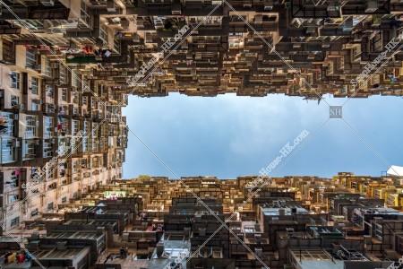 鰂魚涌 怪獣マンション(怪獣大廈) の風景 その㊵