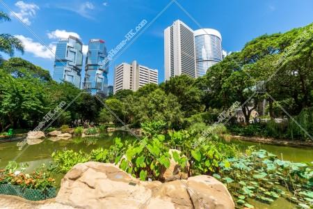香港公園と金鐘(アドミラリティ)の風景 その⑦