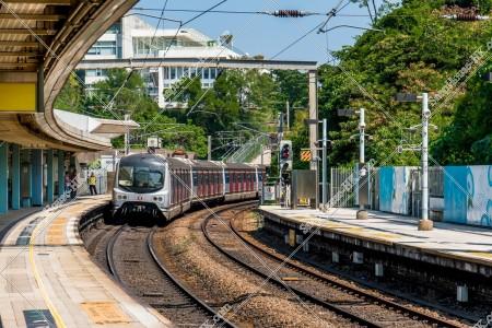 MTR 東鉄線(東鐵綫) 発車する列車