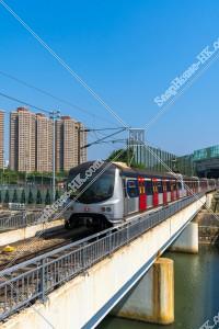 MTR 東鉄線(東鐵綫) 川の上の橋を通過する列車 [縦向き] その②
