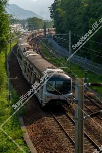 MTR 東鉄線(東鐵綫) 走行中の列車