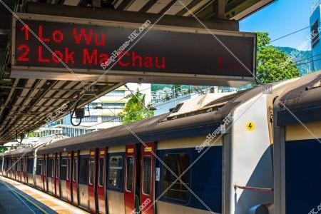 MTR 東鉄線(東鐵綫) 電光掲示板と停車する列車