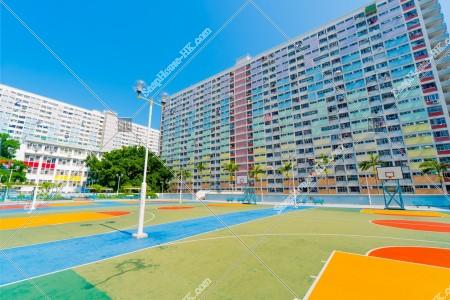 彩虹邨とバスケットコートの全体写真