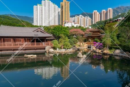 南蓮園池 見晴らし台から見る亭橋、松茶榭と池 その④