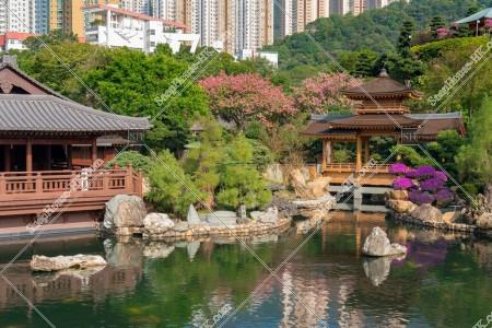 南蓮園池 見晴らし台から見る亭橋、松茶榭と池 その⑤
