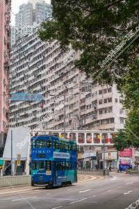 鰂魚涌 怪獣マンション(怪獣大廈) と香港トラム その③