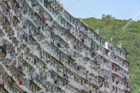鰂魚涌 怪獣マンション(怪獣大廈) の風景 その㉜