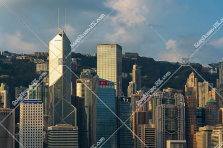 朝のセントラル(中環)の高層ビル群の風景 その⑧