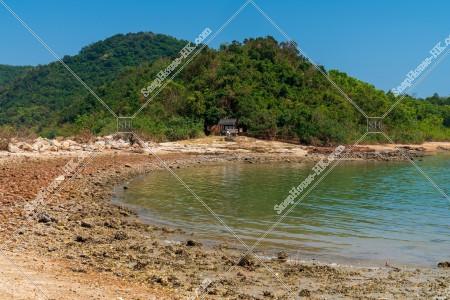 馬屎洲 木と海岸の風景 その①
