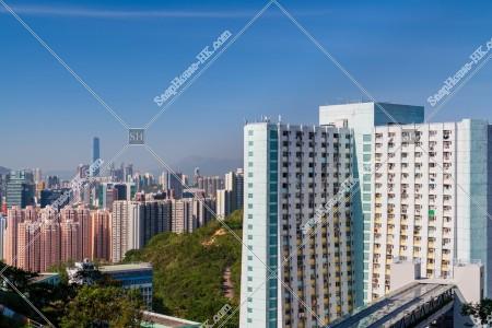 觀塘 公共住宅「順安邨」と九龍の風景
