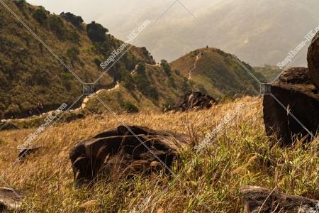 大東山 ススキの風景 その⑩