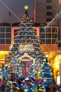 尖沙咀 クリスマスライトアップ その⑫