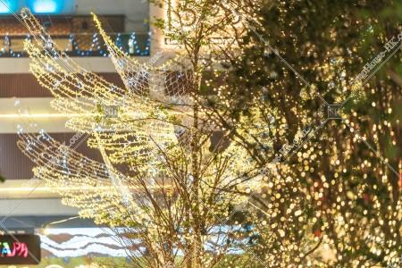 灣仔 利東街のクリスマスライトアップ その⑰