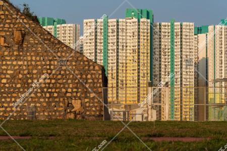 公園と公共住宅